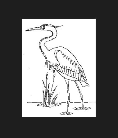 De Tervaete Stappers Keiem